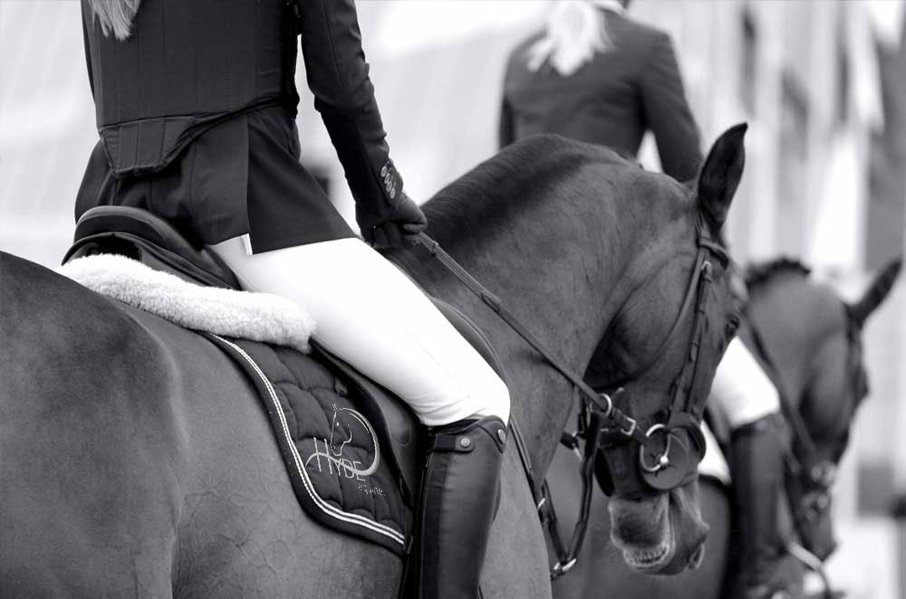 Hyde Equine Training & Livery Horse & Pony Selection