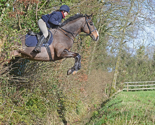 Hyde Equine Training & Livery Cross Country Hunting