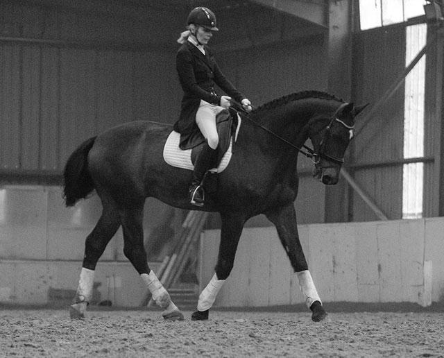 Hyde Equine Training & Livery Dressage